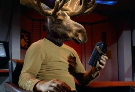 captain-moose-tiberius-kirk